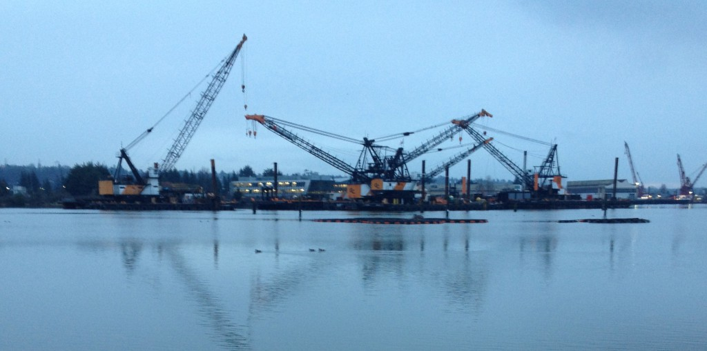Early morning on the Duwamish River - view from T-107 / Herrings House Park.